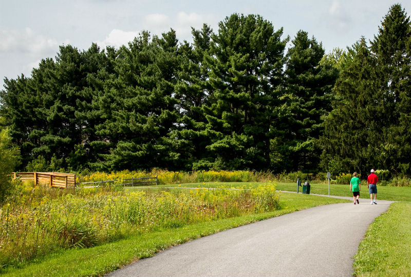 DeFo_Upper Yahara Trail_7563