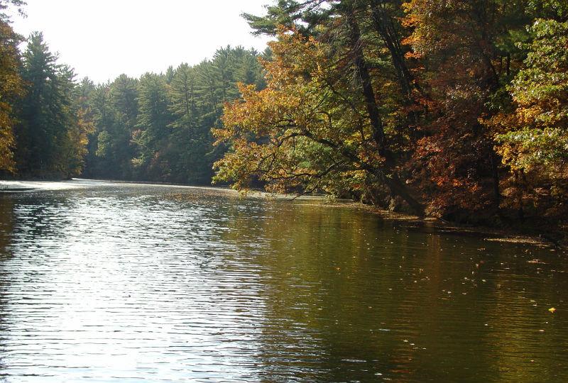 Lake Leota Lake Restoration Vierbicher